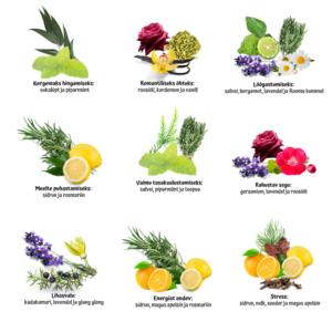 9 parimat aroomiteraapilist vannisoola retsepti